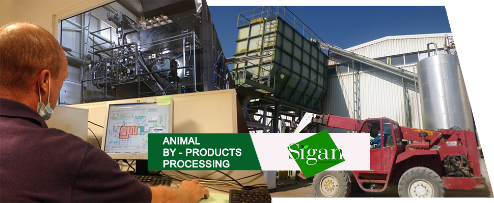 Animal by-products processing